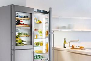 refrigeratorpic-freestanding