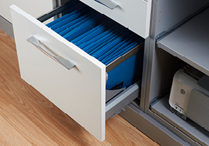 crown_info_livingstorage-1